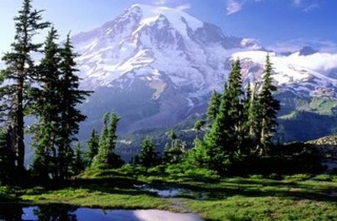 Mt Rainier Seattle Washington