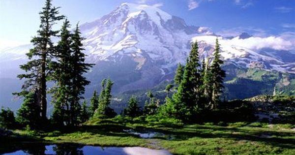 Mt Rainier Seattle Washington