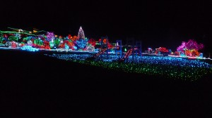 Zoolights Tacoma Washington