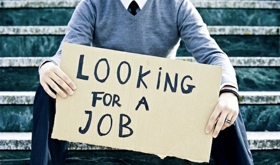 Searching For A Job In Seattle Company Search